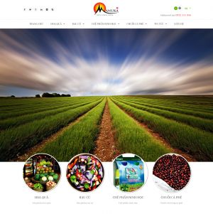 Nâng cấp website bán hàng MANUKA