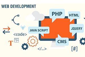 Nên chọn dịch vụ thiết kế web giá rẻ hay chuyên nghiệp ?